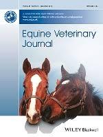 Equine Vetenerary