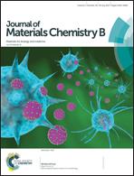 J Mater Chem B